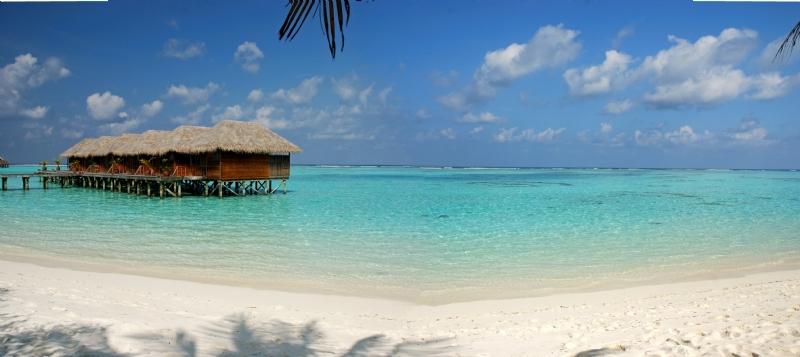 Fly til Maldivene