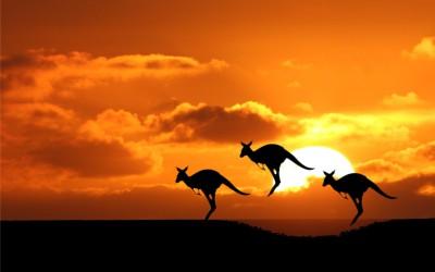 Australia ferie og opplevelser